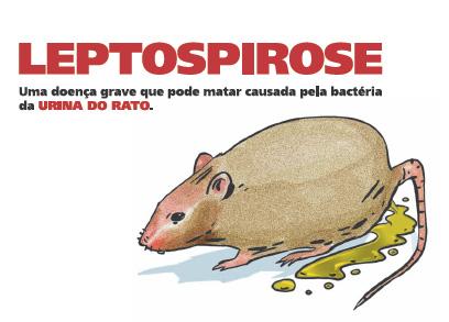 Enchentes e chuva intensa aumentam risco de contrair leptospirose
